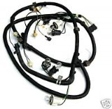 Taillight Wire Harness (Used)